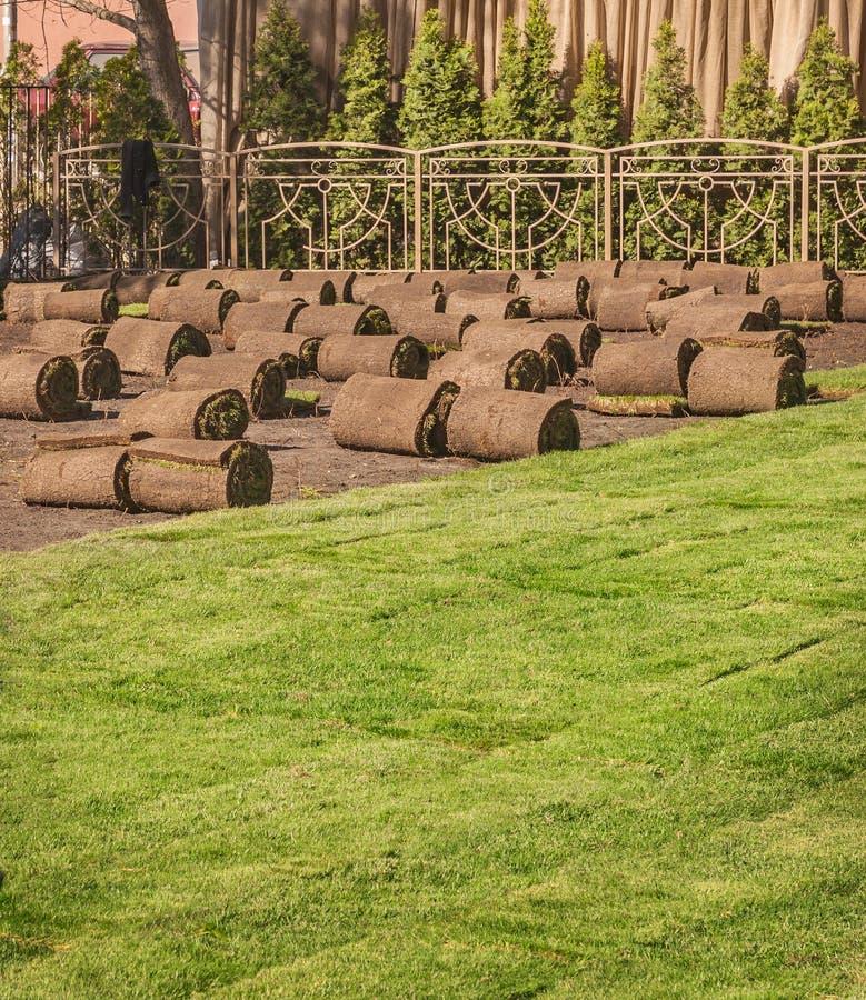 Rullande sod för ny lawn royaltyfri bild