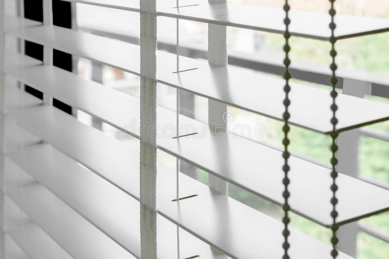 Rullgardin för vit färg för Closeup trämed vita stegebandgardiner Solljus till och med fönstren i staden med trädgården Selektiv  arkivbilder
