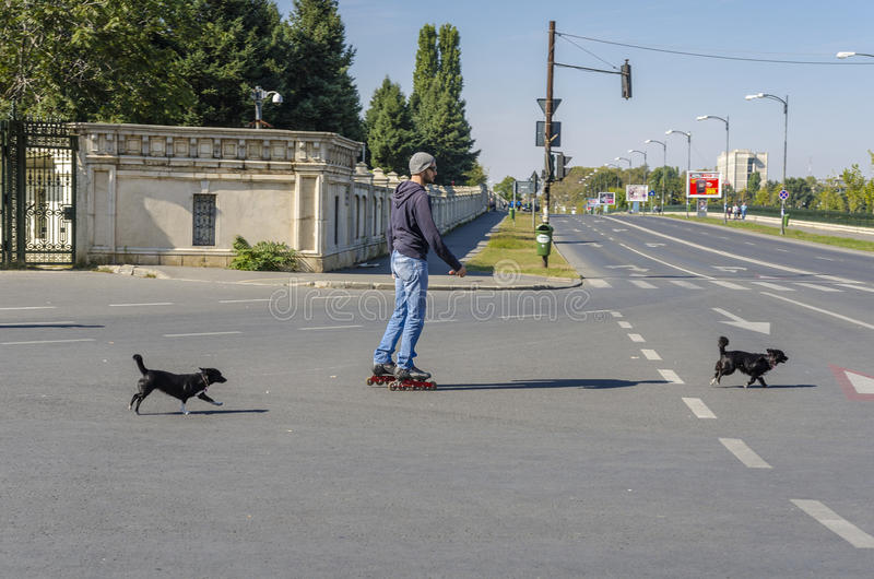 Rullskateboradåkare på gatan fotografering för bildbyråer