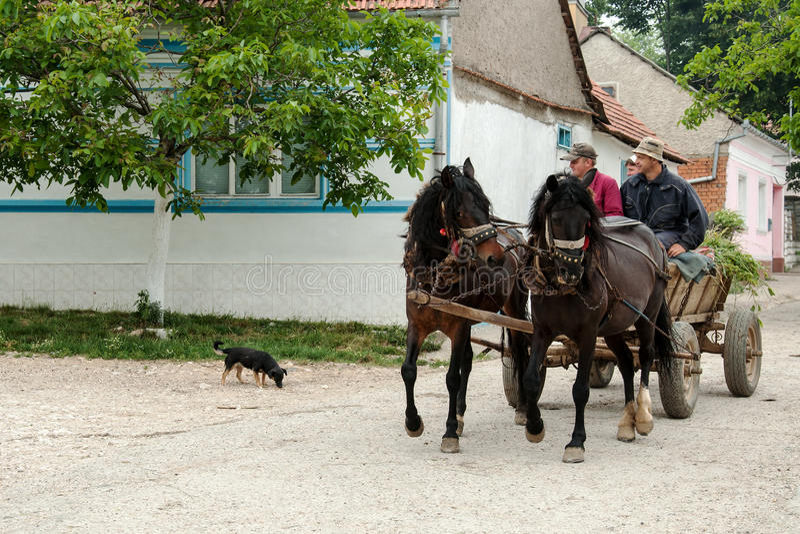 Rumäne Banat lizenzfreie stockfotografie