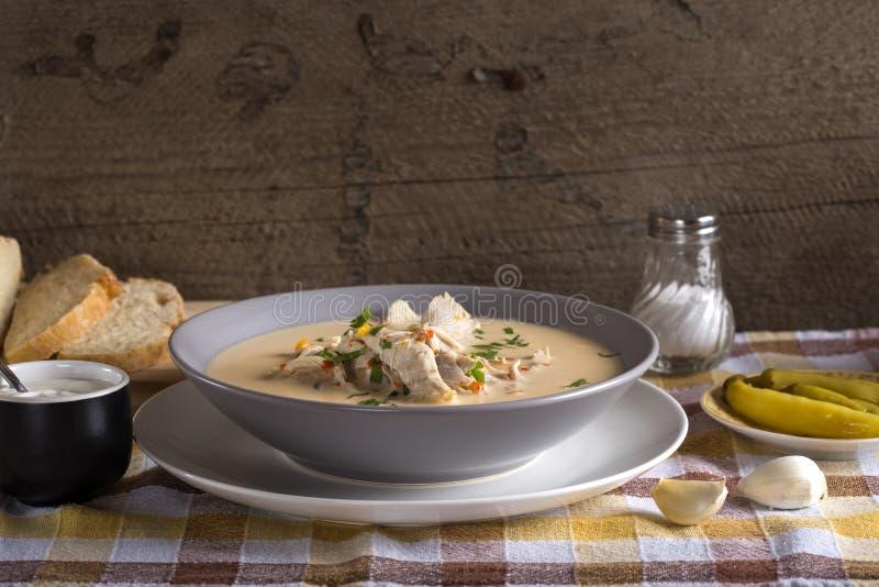 Rumänsk feg soppa som namnges Ciorba Radauteana arkivfoton