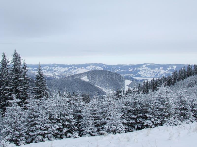 Rumänska berg royaltyfria foton