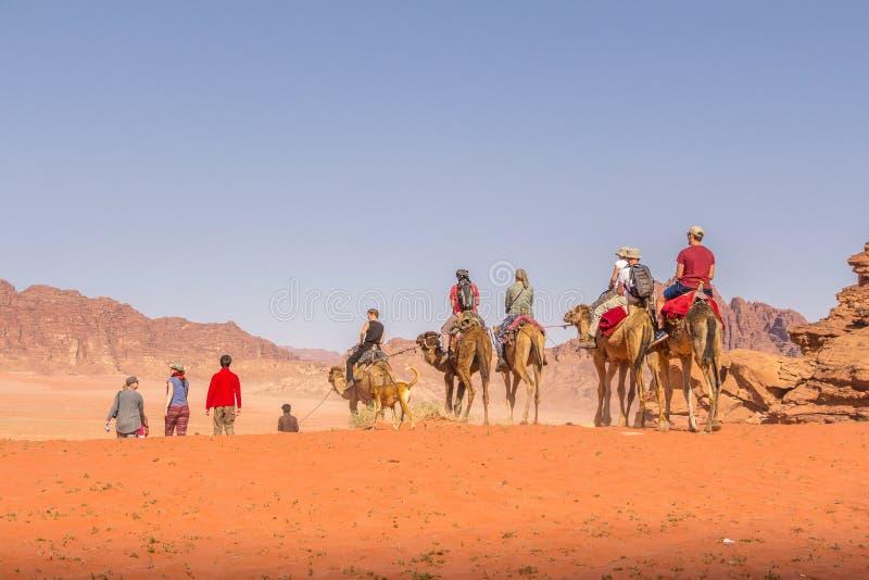RUM DEI WADI, GIORDANIA - 28 APRILE 2016: Uomo beduino sul cammello immagini stock libere da diritti