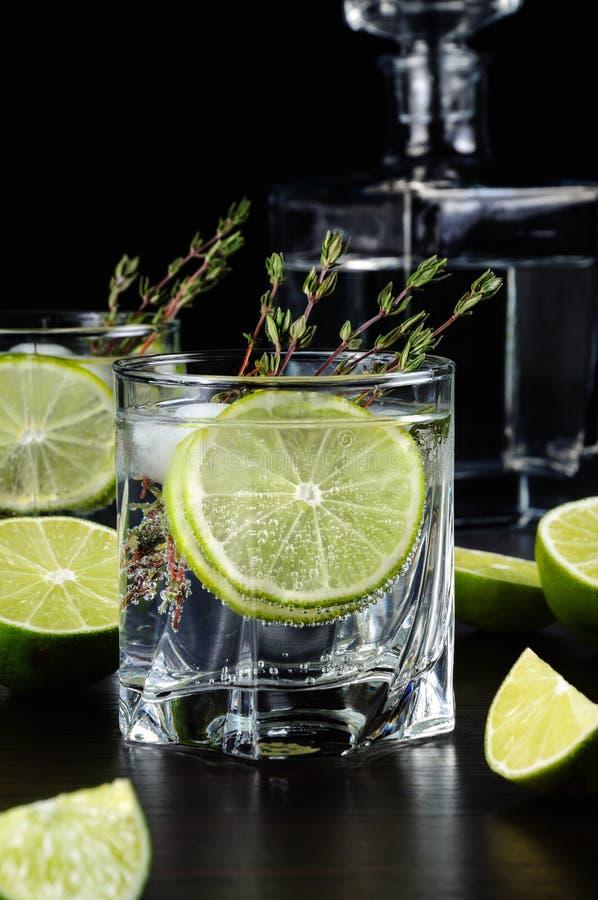 Rum i tonika zdjęcia royalty free
