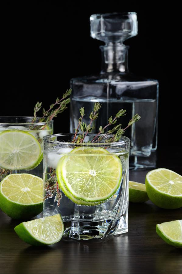 Rum and tonic. Cocktail with white rum and tonic, a slice of lime and thyme royalty free stock photos