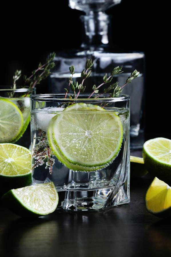 Rum and tonic. Cocktail with white rum and tonic, a slice of lime and thyme stock photo