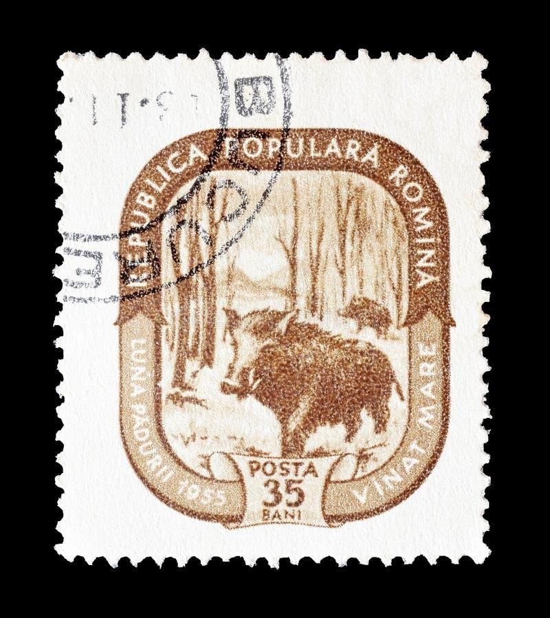 Rumania en sellos fotografía de archivo libre de regalías