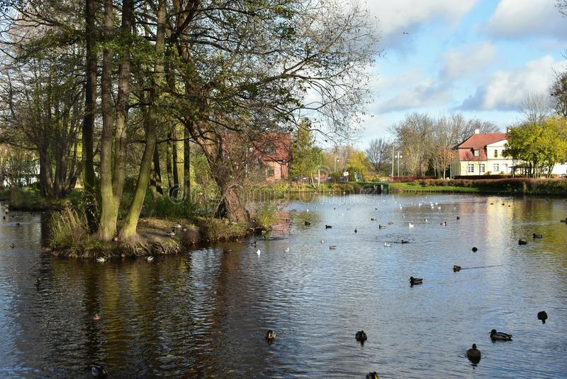 Rumia Муниципальный парк в Rumia, Польше стоковая фотография
