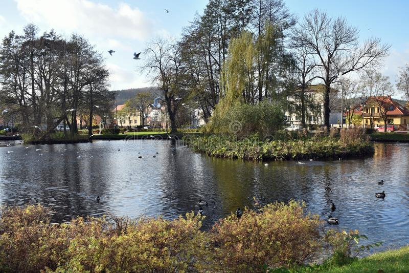Rumia Муниципальный парк в Rumia стоковая фотография
