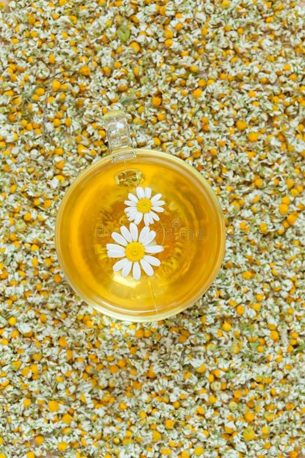 Rumianek herbaty naturalny ziołowy organicznie napój wewnątrz obraz stock
