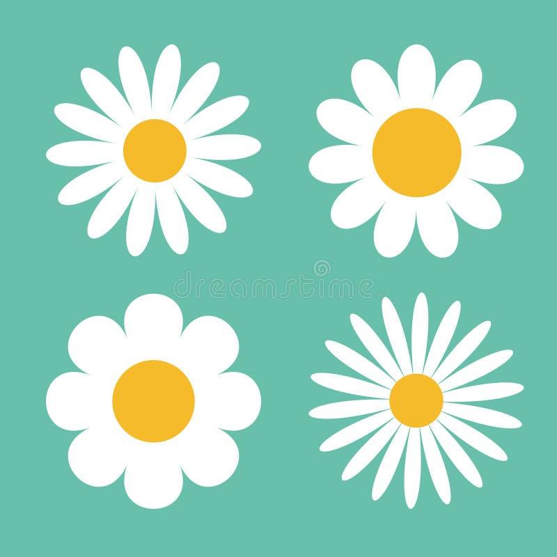 Rumianek ikony set Białej stokrotki chamomile ilustracja wektor