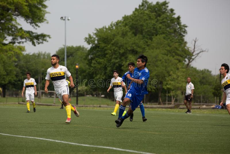 Rumienić się łąki korony słonecznej parka gracz piłki nożnej fotografia stock