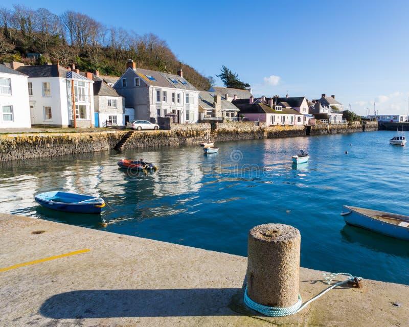 Rumienić się Cornwall zdjęcie royalty free