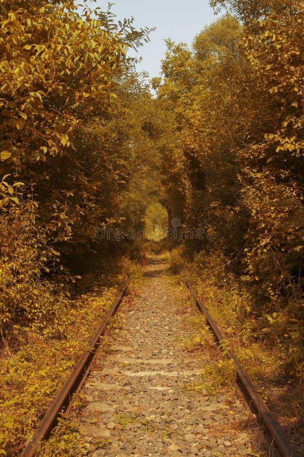 Rumuński miłość tunel zdjęcie royalty free