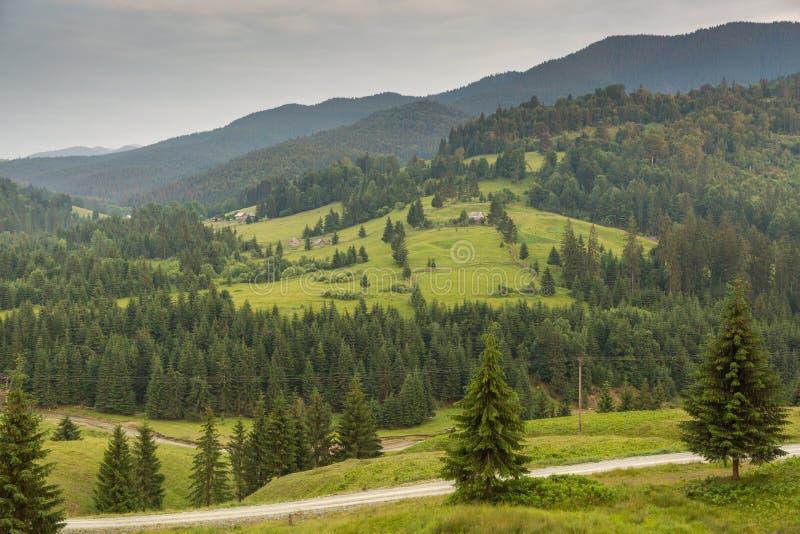 Rumuński zbocze i wioska w lato czasie zdjęcie royalty free