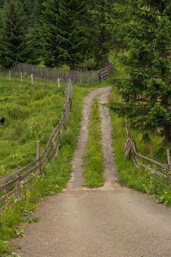 Rumuński zbocze i wioska w lato czasie obrazy royalty free