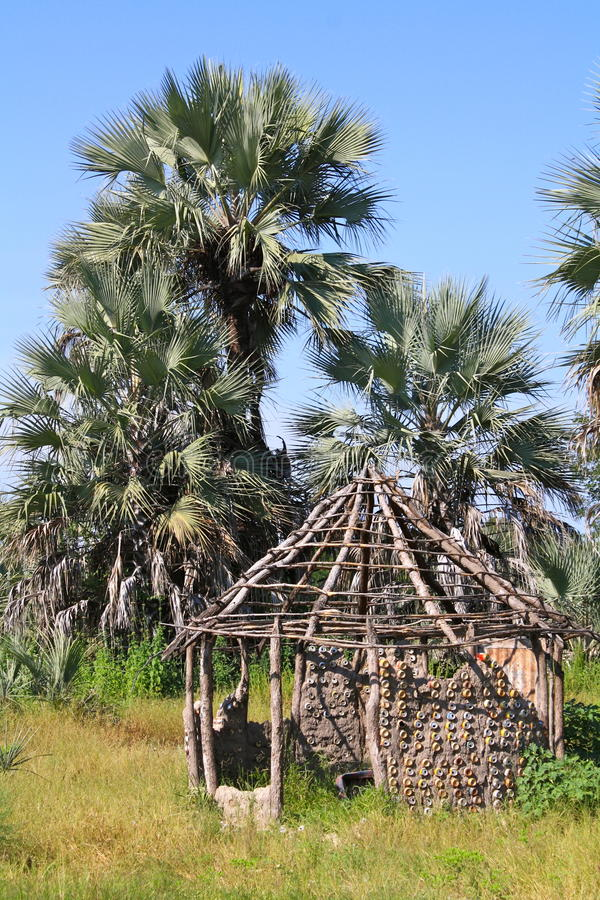Run-Down African Hut with Palm Trees in Northern Botswana royalty free stock photo