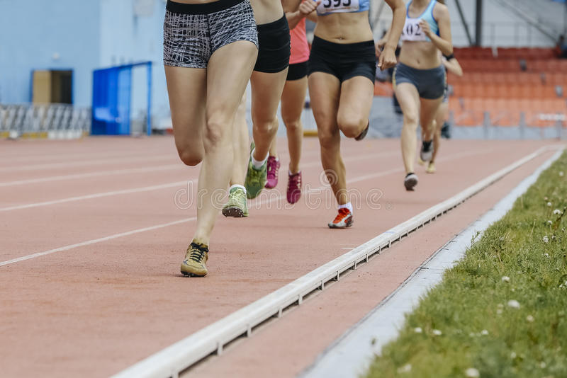 Run girls 800 meters. At stadium during athletics competitions stock images