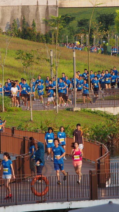 Run Marathon, Punggol Waterway, Singapore. Runners during the ST Run in the Park marathon at Punggol Waterway, Singapore royalty free stock images
