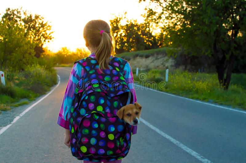 Runaway girl on the road. Runaway girl walking on the road at sunset with her pet puppy royalty free stock image