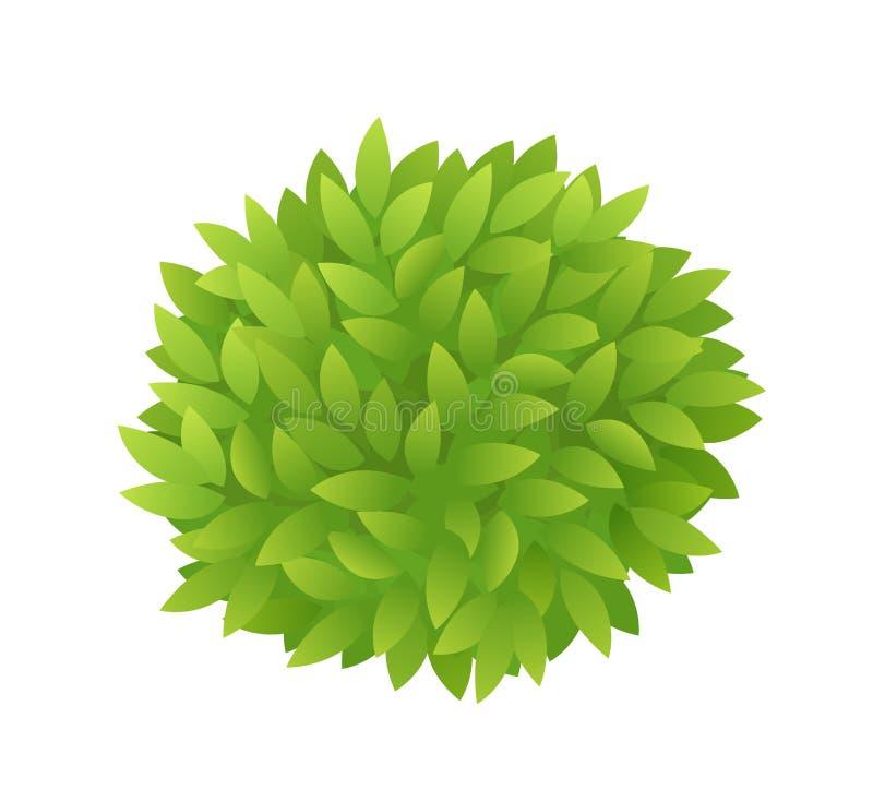 Rund buskelövverk av gröna sidor Gräsplan lämnar te- eller trädtextur Tjocka busksnårbuskar Eco sommardesign vektor stock illustrationer