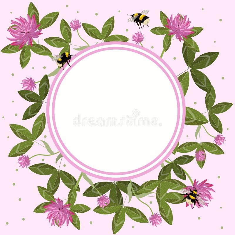 Rund gräns av växt av släktet Trifoliumsidor, blommor och humlor, tom blommaram Tyg blommar p? den abstrakt purpurf?rgade bakgrun royaltyfri illustrationer
