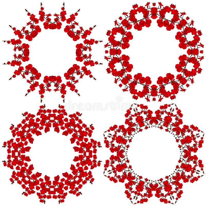 Rund modell fyra Blommor röd orkidé på vit bakgrund stock illustrationer