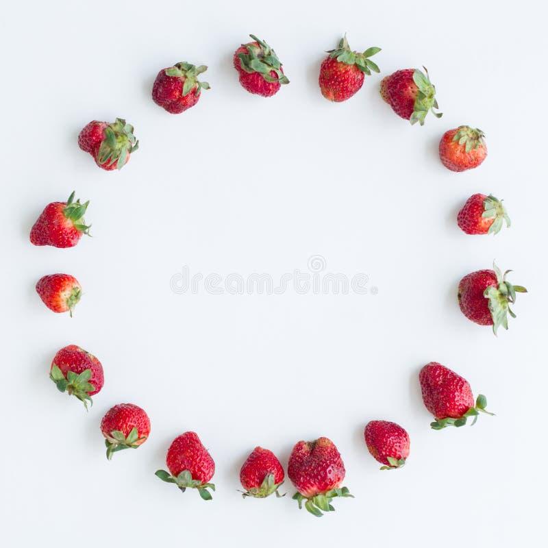 Rund ram av jordgubbar p? vit bakgrund Lekmanna- l?genhet, b?sta sikt Format 1x1, fyrkantigt foto arkivfoto