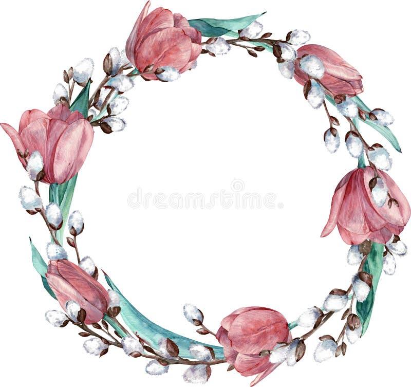 Rund vårkrans för vattenfärg med rosa tulpan och pussy-pilen som isoleras på vit bakgrund - illustration stock illustrationer