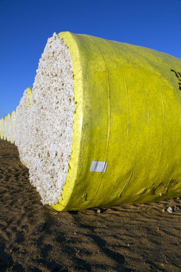 Runda baler av skördad bomull som slås in i gul plast- arkivbild