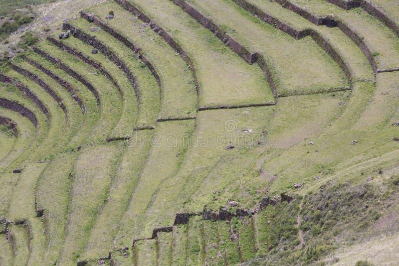 Runda jordbruks- terrasser av Incas i den sakrala dalen, Peru royaltyfria foton