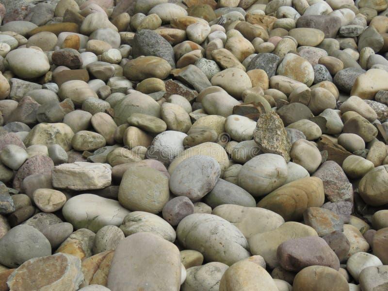 Runda stenar, bakgrund, tapet Den stora rundan tonade kiselstenar på stranden royaltyfri foto