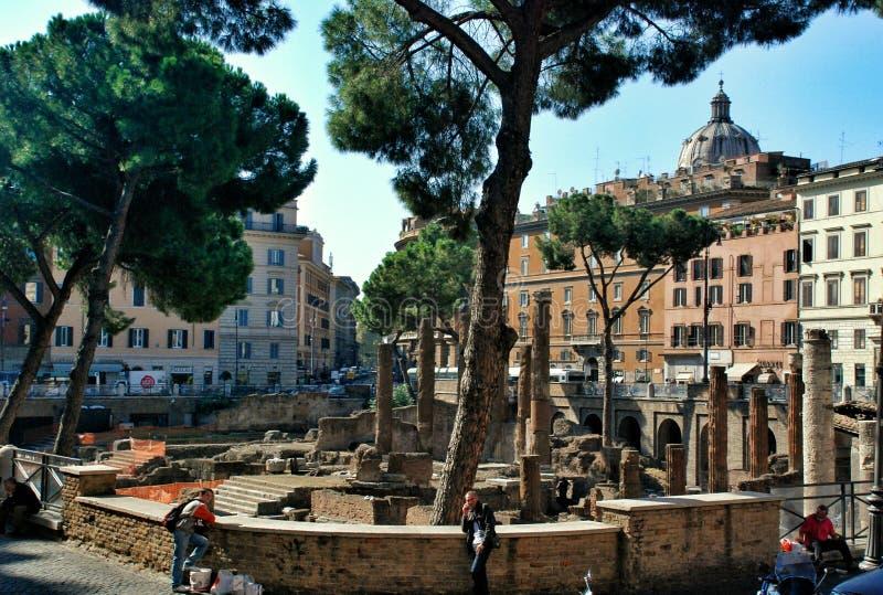 Runda tempelkolonner Rest av den Pompeys teatern Forntida universitetsområde Martius italy rome royaltyfria foton