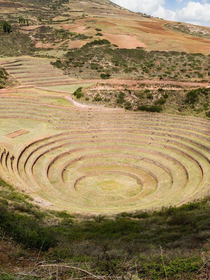 Runda terrasser f?r forntida Inca p? den jordbruks- experimentstationen f?r Moray, Peru, Sydamerika arkivbild