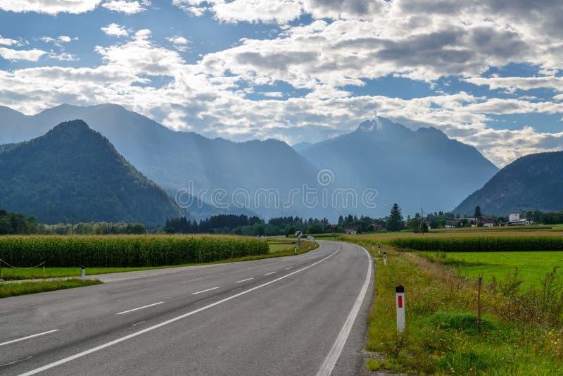 Rundad asfaltväg i den härliga alpina dalen fotografering för bildbyråer