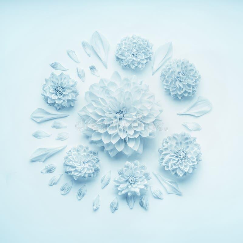 Runde Blumenzusammensetzung mit Türkisblau-Pastellblumen, flache Lage, Draufsicht Plan für Grußkarte des Muttertages, Geburtstag stockbild