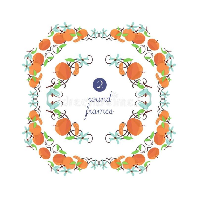Runde Rahmen des Vektors mit Mandarine und Blume stock abbildung