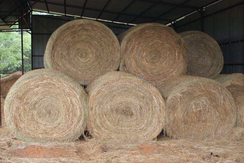 Runder Hay Bales In The Barn lizenzfreie stockfotos