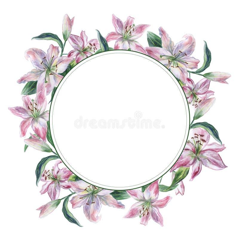 Runder Rahmen mit weißen und rosa Aquarell lilys lizenzfreie abbildung
