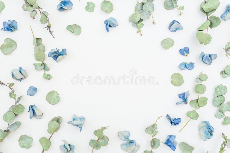 Runder Rahmen von blauen Blumen und von Eukalyptus auf weißem Hintergrund, flache Lage, Draufsicht Gelbe Blumen, Basisrecheneinhe lizenzfreies stockbild