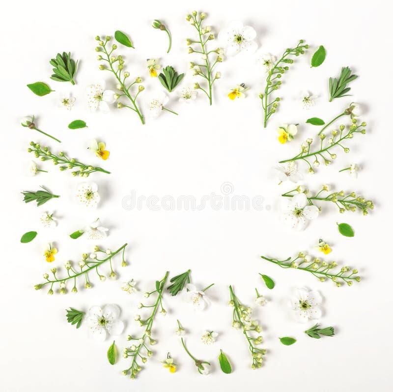 Runder Rahmenkranz gemacht von den Frühlingsblumen und -blättern lokalisiert auf weißem Hintergrund Flache Lage lizenzfreie stockfotos