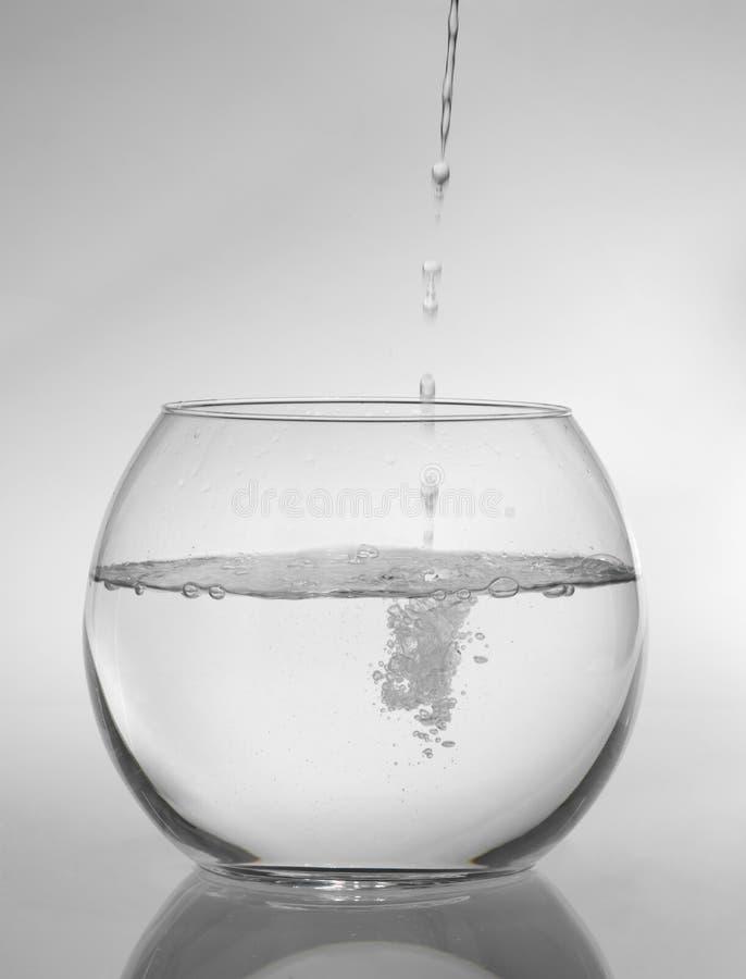 Rundes Aquarium lizenzfreies stockbild