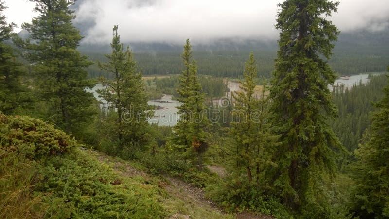 Rundlestone mountain banff. Mountain forest national park Canada Alberta Banff trees peak clouds morning stock image