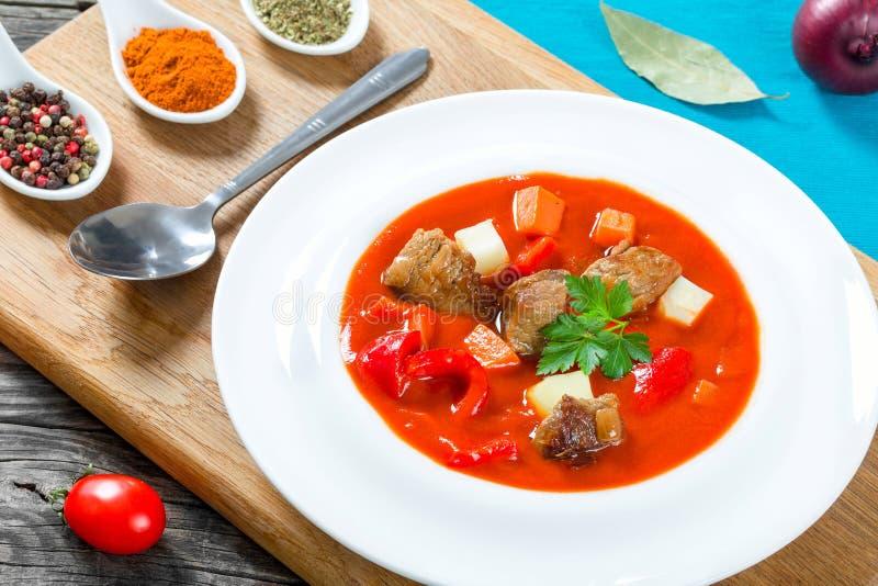 Rundvleeshutspot met groenten of goelasj, traditionele Hongaarse maaltijd royalty-vrije stock afbeelding