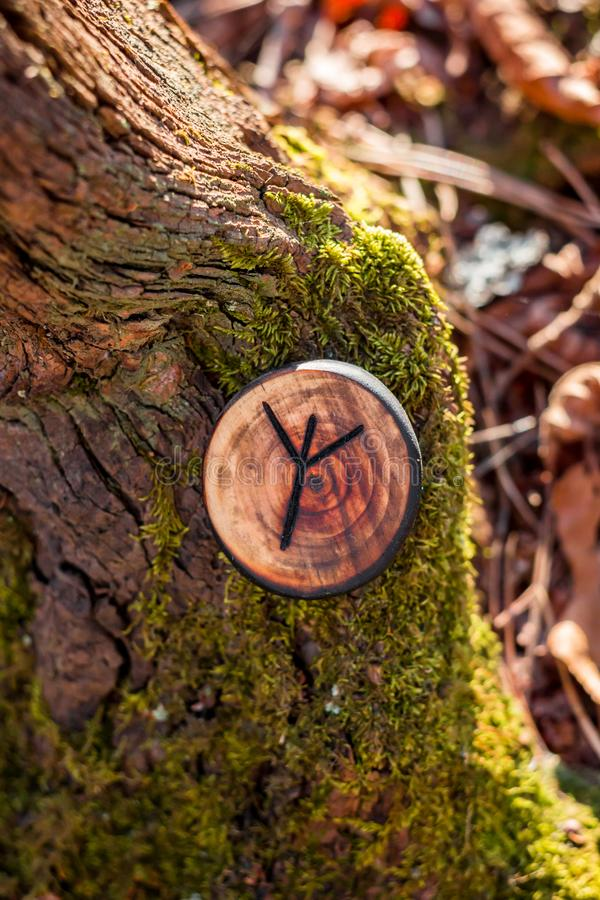 Rune of Algiz also Elhaz carved from wood. On a dry stump royalty free stock images