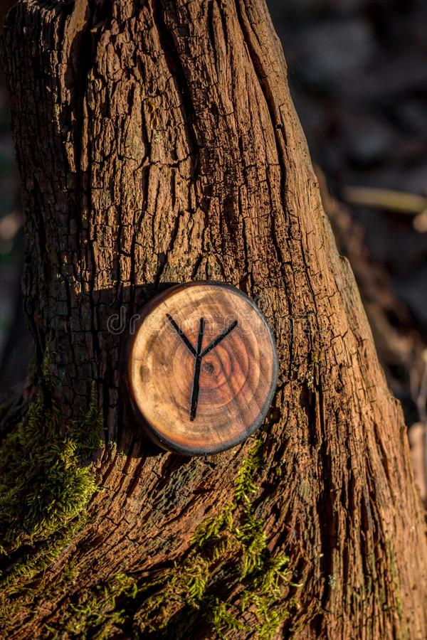 Rune of Algiz also Elhaz carved from wood. On a dry stump royalty free stock photos