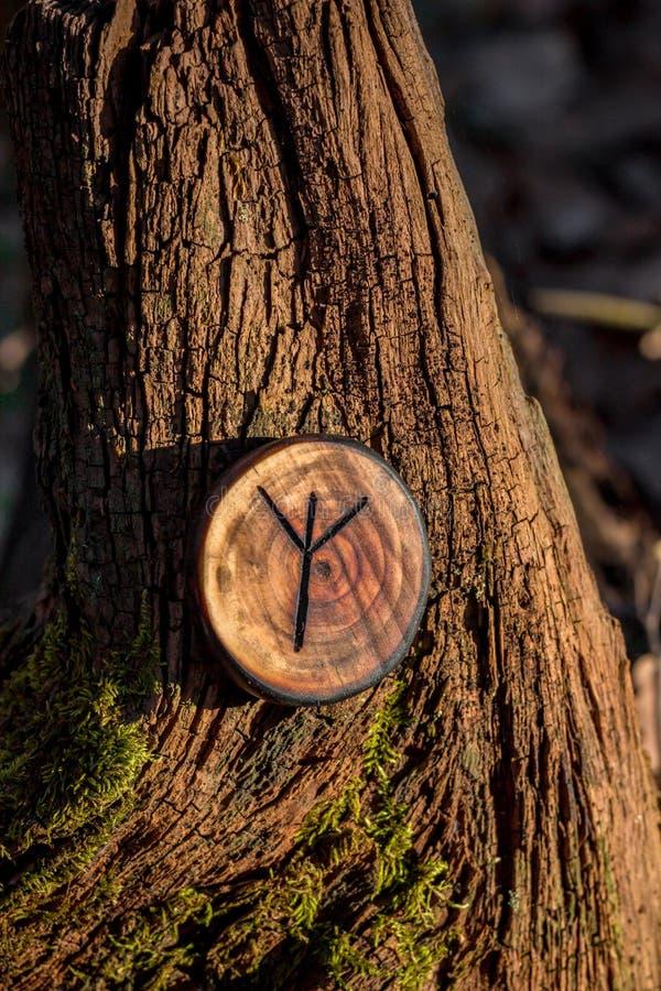 Rune van Algiz Elhaz van hout ook wordt gesneden dat royalty-vrije stock foto's