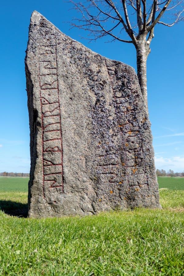 Runestone w polu zdjęcia royalty free