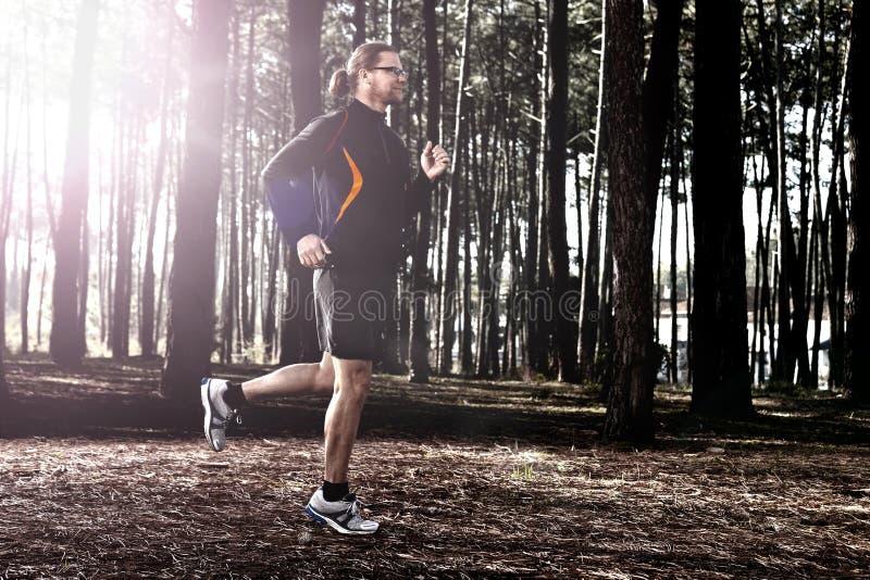 Runing na floresta foto de stock