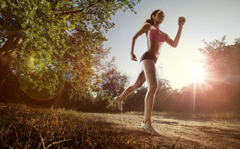 Runner athlete running at park. royalty free stock photography